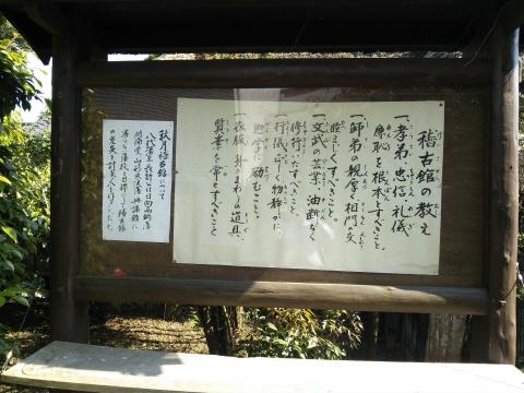 6DSC_0038.JPG