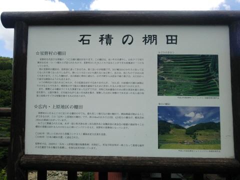 7DSC_0005.JPG